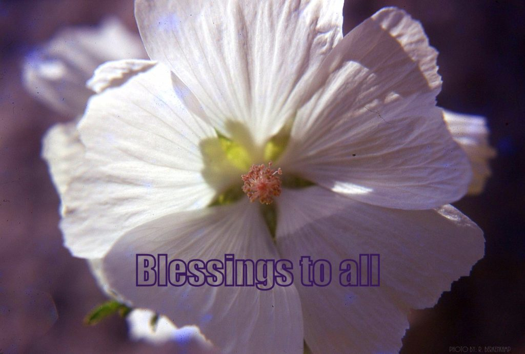 The Blessing Thread.  The power, grace and beauty of sending blessings to others.