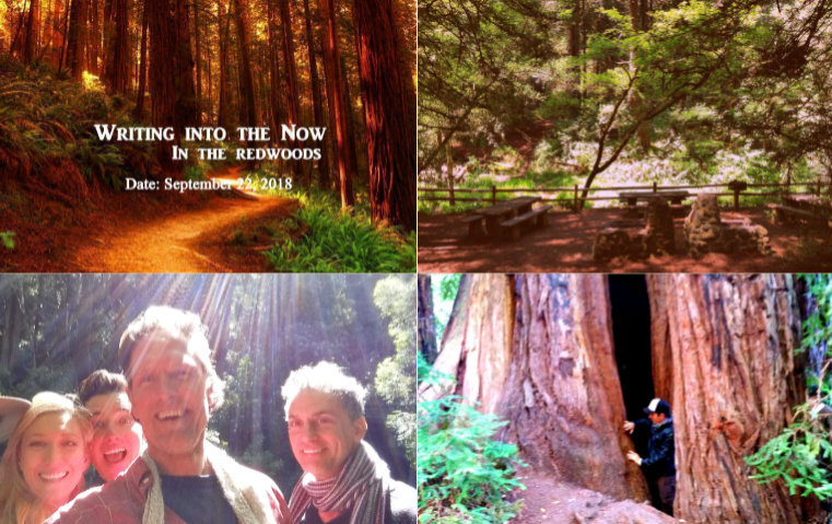 "Transformative ""Writing Into The Now"" workshop in the magnificent redwoods. Saturday September 22, 2018"